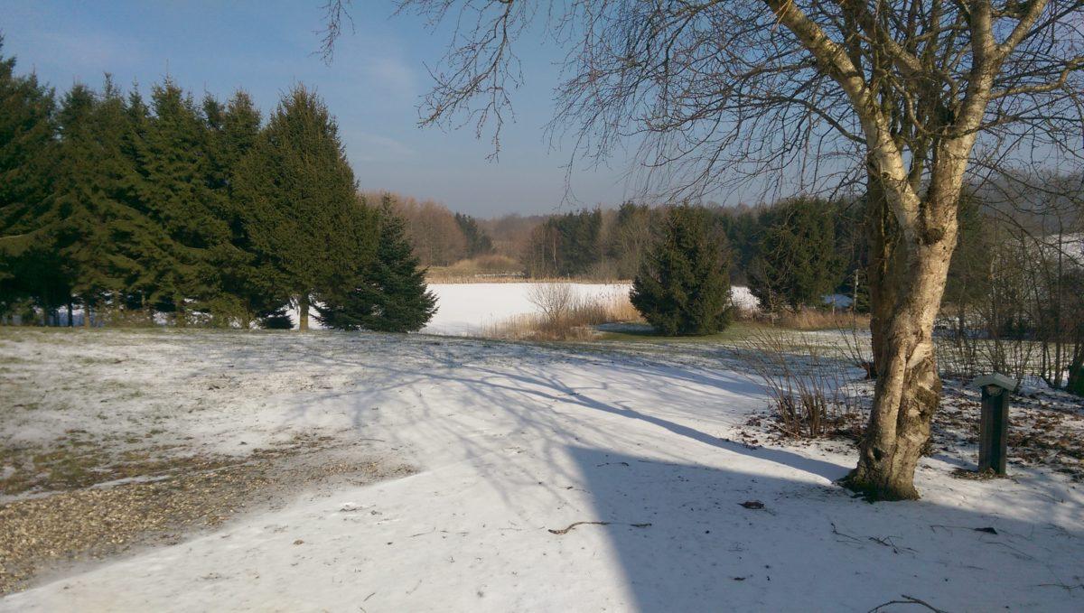 Forår ifølge kalenderen, men alligevel sne. Meget smukt.